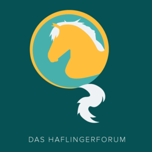 das-haflingerforum